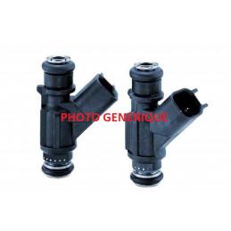 Injecteur Delphi R02501AA1