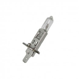 Ampoule H1 55W 12V Blanc